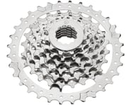 Dimension 7-Speed Cassette (Nickel) | product-related