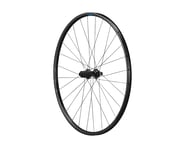 Shimano RS171 Disc Rear Wheel (142 x 12) (700c)   product-related