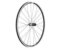 DT Swiss PR1600 Spline 23 Rear Wheel (Black) (700c) (QR x 130mm) (Rim Brake)