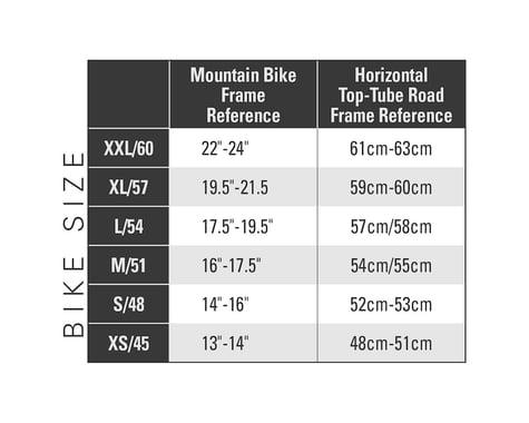Breezer Inversion Team Endurance Road Bike - 2017 (Gunmetal)