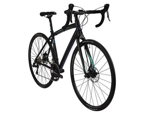 Fuji Bikes Fuji Finest 3.0 LE Women's Road Bike - 2017 Performance Exclusive (Silver)