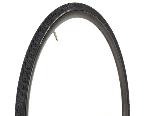 Vittoria Randonneur II Classic Tire (Black) (700c) (25mm)