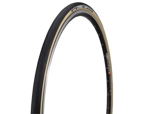 Vittoria Corsa G+ Road Tire (Black) (23)